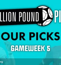 million pound picks